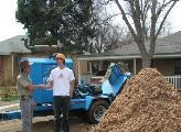 Denver, Colorado tree and stump removal