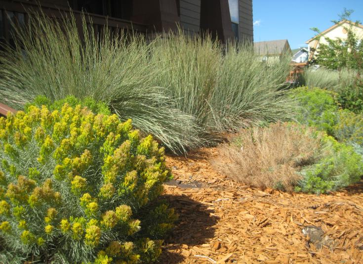 Simple Garden Designs Pictures